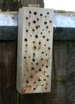 bee post for mason bees