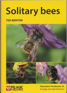 Make a bee hotel the pollinator garden at last a book devoted to solitary bees and its brilliant freerunsca Gallery